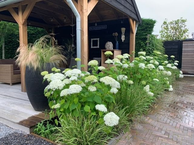 veranda tuin. blog in de tuin